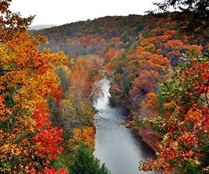 discover ohio s fall foliage color