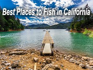 reserve america california