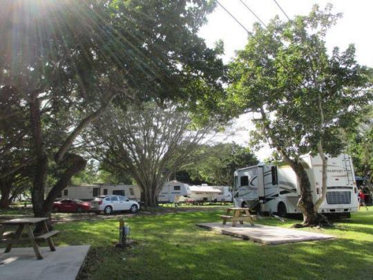miami everglades rv resort fl   facility details  rh   reserveamerica