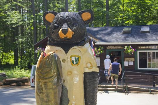 Camping at bear brook state park nh for Do senior citizens need a fishing license