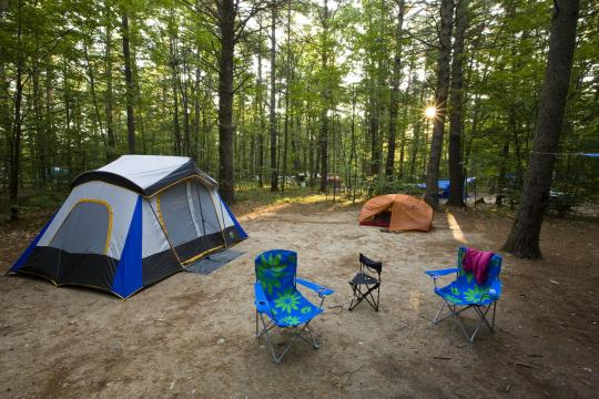 Camping at greenfield state park nh for Do senior citizens need a fishing license