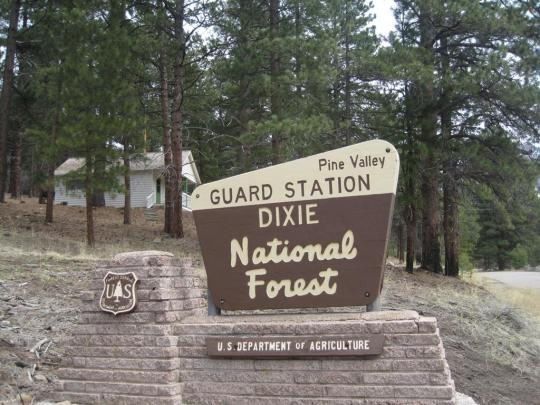 Camping At Pine Valley Guard Station Ut