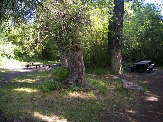 Camping At Box Elder Campground Ut