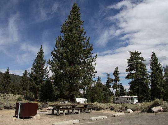 camping at robinson creek north  ca