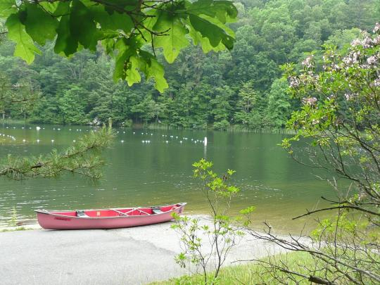 Camping At Trout Pond Recreation Area Wv