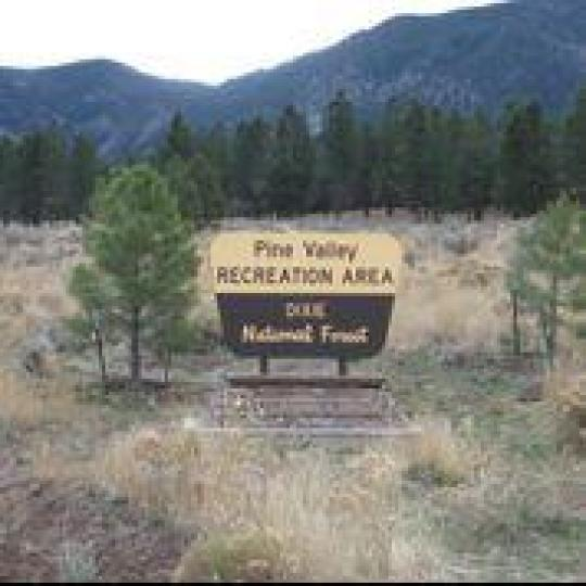Camping at PINE VALLEY RECREATION AREA, UT