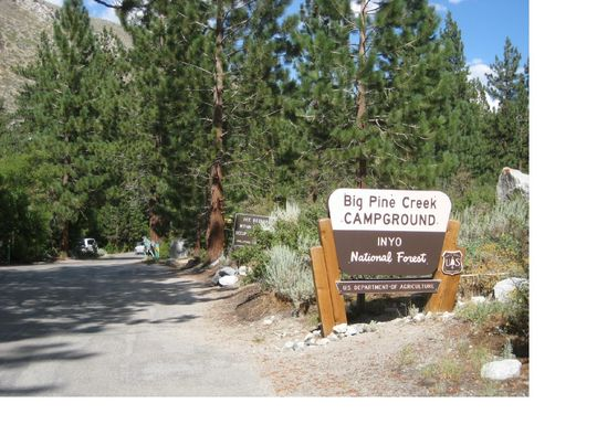 fish camp latin dating site Canal lakes fish camp serves american-style cuisine in the middle of cross' cross district at canal lakes fish camp, service is a priority that why we provide parking spaces on sitekeeping an eye on your budget.