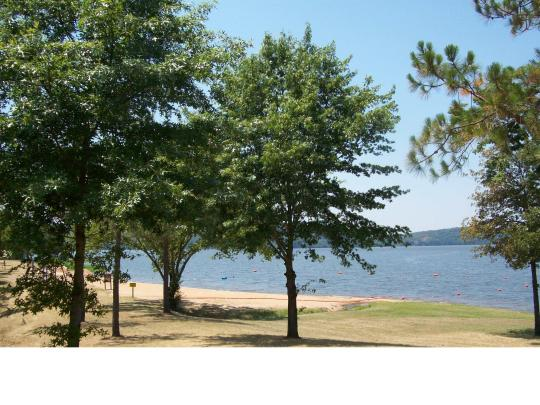Camping at piney bay ar for Lake dardanelle fishing report