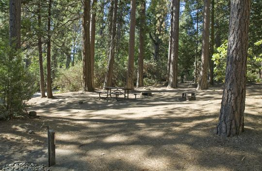 Camping at wishon bass lake ca for How much is a fishing license in california