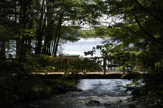 camping at cherry plain state park  ny