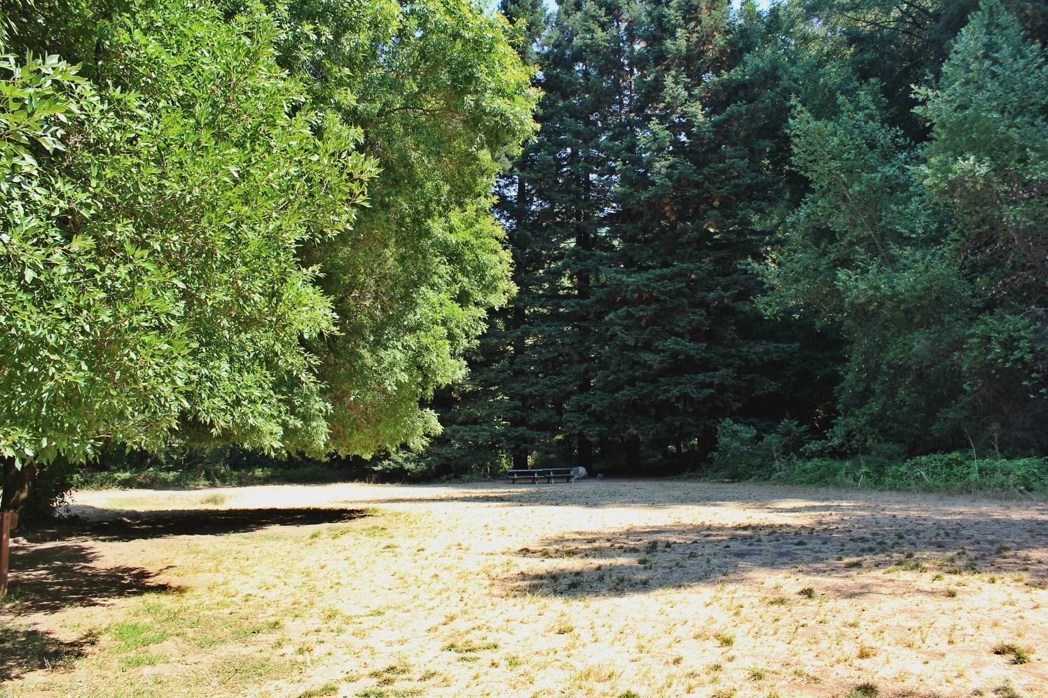 Redwood Regional Park, California - Camping Reservations