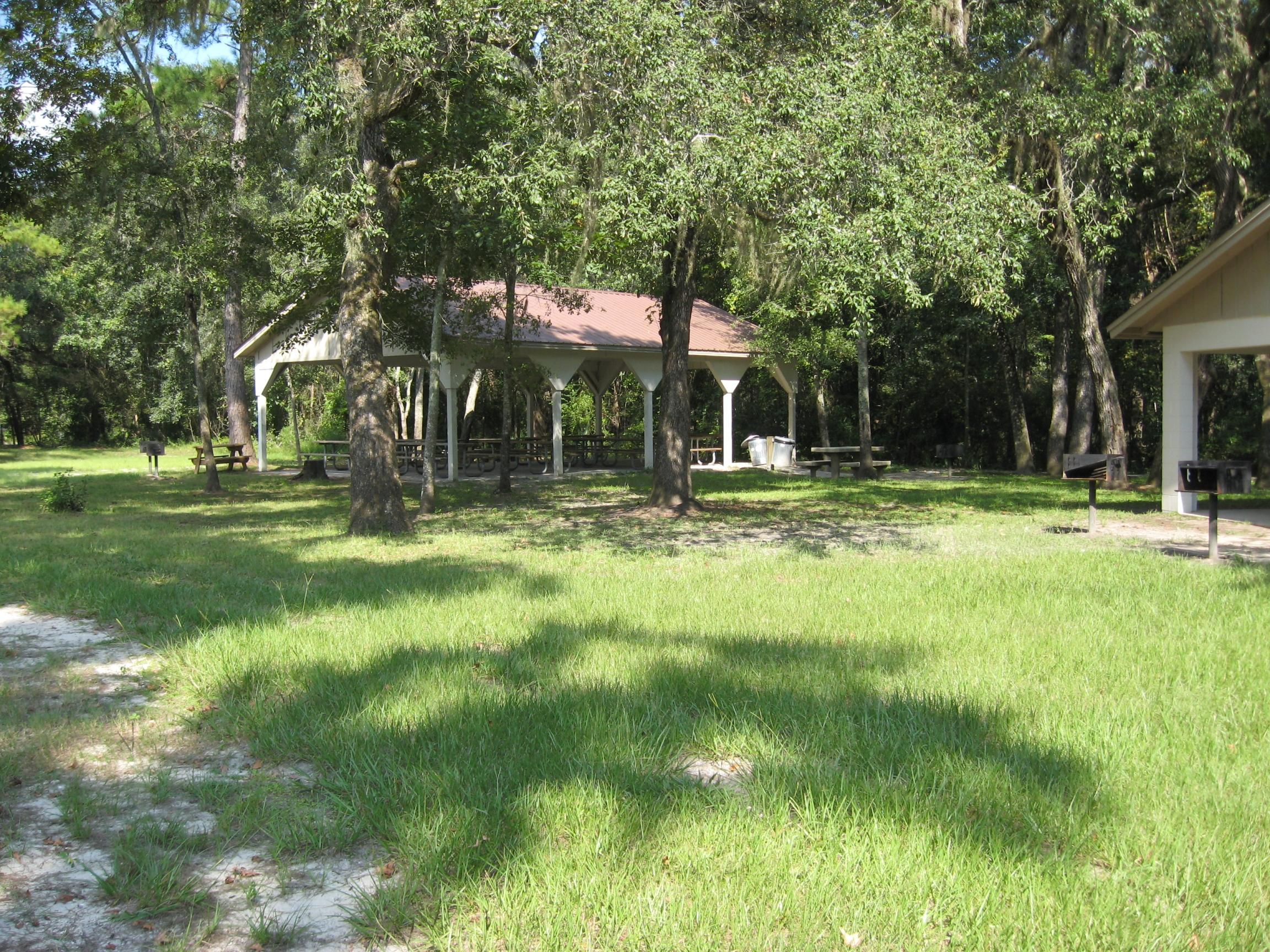 Lafayette Blue Springs State Park, Florida - Camping Reservations