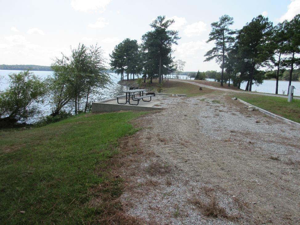 Dames Ferry - Site: Campsite 11, Loop: Premium Campsites