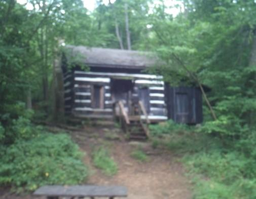 Morgan-Monroe State Forest - Site: Draper Cabin, Loop