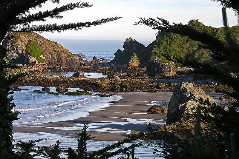 Harris Beach State Park, Oregon - Camping & Reservations