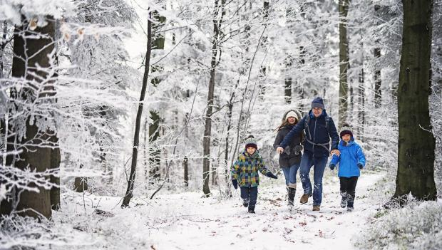 Hiking In The Snow What You Need To Know