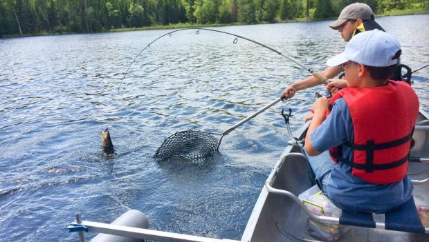 9 Refreshing Lake Camping Experiences