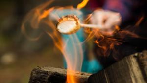Camping Articles - Tips, Recipes, Destinations and More