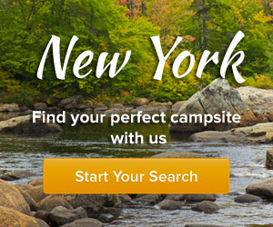 New york banner for New york out of state fishing license