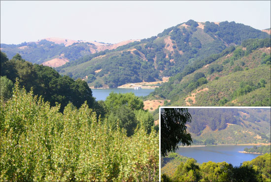 Chabot Family Campground At Anthony Chabot Regional Park