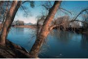 Photo: COLUSA-SACRAMENTO RIVER SRA