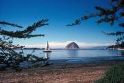 Photo: MORRO BAY SP