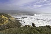 Photo: SALT POINT SP