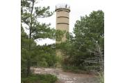 Photo: Cape Henlopen State Park