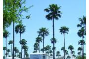 Photo: Paradise Park RV Resort