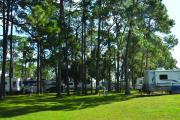 Photo: Southern Palms RV Resort