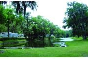 Photo: Bulow RV Resort