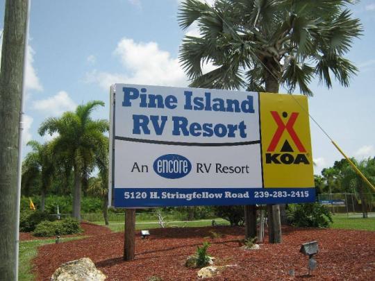 Pine Island Florida What To Do