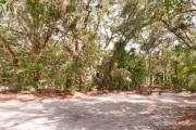 Side view of sandy site 112 showing picnic table with live oak trees nestled under shady maritime hammock in Anastasia State Park.
