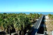 An ADA accessible boardwalk leads across sand dunes and past green cabbage palms to the Gulf of Mexico and Caladesi Island's beach.