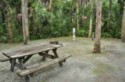 This view shows a wooden picnic table, brown metal ground grill, & gray electrical box. The water spigot is to the right of the electrical box. It is heavily shaded with green vegetation. Soil is tan with sparse green grass. One Cabbage Palm is within the picnic area.