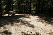 Shaded campsite with picnic table and ground grill.