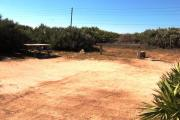 Packed sand campsite with palmetto plants and scrub buffer at the back. Palmetto plants border each side for privacy. Picnic table and grill on left side.