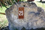 Large rock with metal sign with campsite number 25 on it located to the left of the site. Palmetto plant behind it.