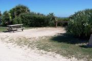 Packed sand campsite with scrub, palmetto plants, and sea oats lining the back of the site. Barricade posts to protect vegetation. Picnic table and ground grill located on the left and electric and water on the right. Palmetto plants provide privacy.