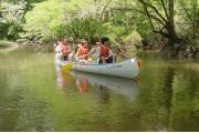 Canoeists studying the abundant flora and fauna found along the banks of the Chipola River.