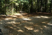 Campsite surrounded by tall trees with picnic table and lots of shade.