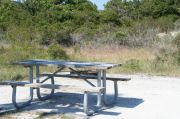 Picture of campsite amenities including campfire ring and picnic table