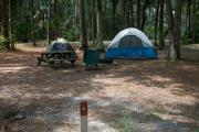Primitive campsite with picnic table and ground grill. Two tents and lawn chair are in the site, not included.