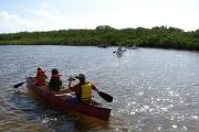 Photo: LONG KEY SP. Four boats of canoeists paddling around the Long Key Lakes Trail by the Mangroves with sunlight reflecting off the water.