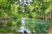 Photo: MANATEE SPRINGS SP