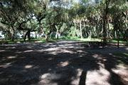 This is a picture of campsite 10 from the back of the site looking toward the road.   The site has water and 50amp electric service.  This is a partly sunny site with a gravel foundation.  The site has a picnic table and a ground campfire ring.