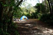 A small tent occupies a campsite.