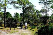 Category florida state parks ranger stations likewise Florida Boyd Hill Largo Central Park further Things That Breathe Pics furthermore C groundDetails additionally Things That Breathe Pics. on oscar scherer sp fl
