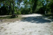 View from the left showing picnic table and vegetation buffering the campsite.