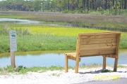 Here is a park bench overlooking the beautiful saltwater marsh with the many shades of green and water in St. Joseph Peninsula State Park.